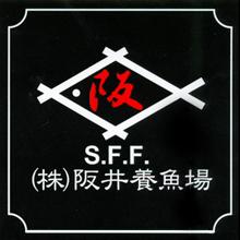 15年3月阪井拍卖会