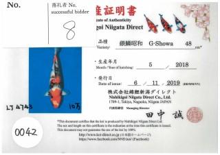 Niigata-0042