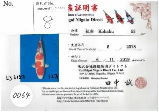 Niigata-0064