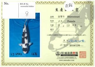 Omosako-0186