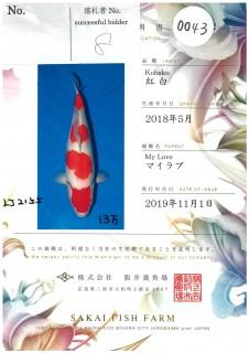 Sakai-0043