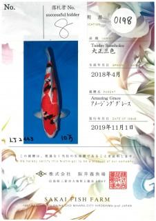 Sakai-0198