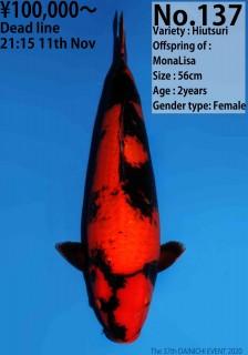 137_56cm_MonaLisa N11144 16W