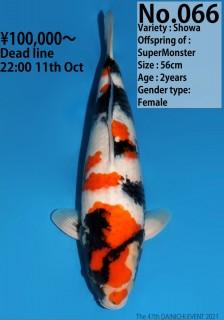 066_56cm_SuperMonster