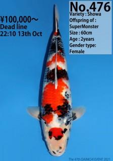 476_60cm_SuperMonster
