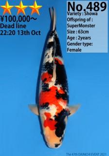 489_63cm_SuperMonster_s3
